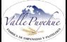 Valle Puyehue